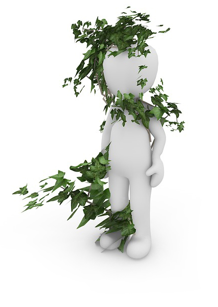 Ivy Plan Mascot | Mindgardens